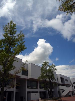 Cloud009